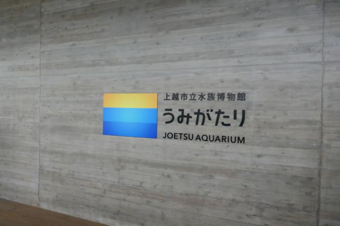 上越市水族館『うみがたり』連休初日の大盛況!超混雑してても楽しかった!