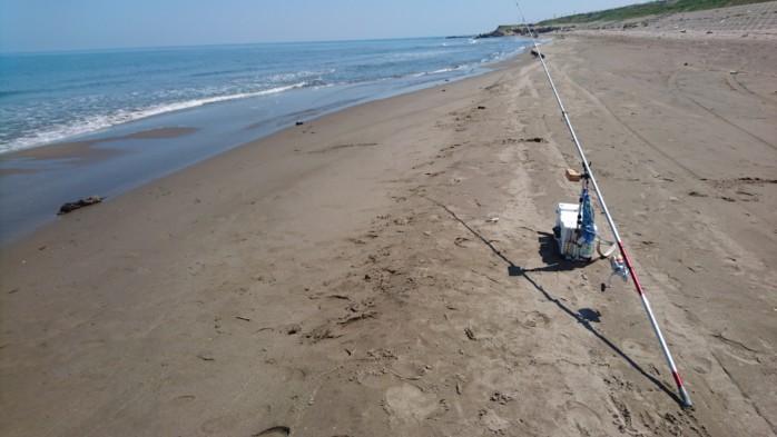 新潟の砂浜で投げ釣り 凪が続くとキスが爆釣します
